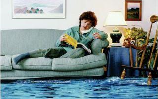 Как составить жалобу в жилищную инспекцию?